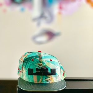 "Lebron James ""Kings Pride"" Nike Hat - Rare"